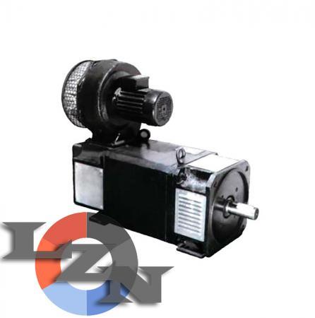 Электродвигатель постоянного тока MP-132MG1 - фото